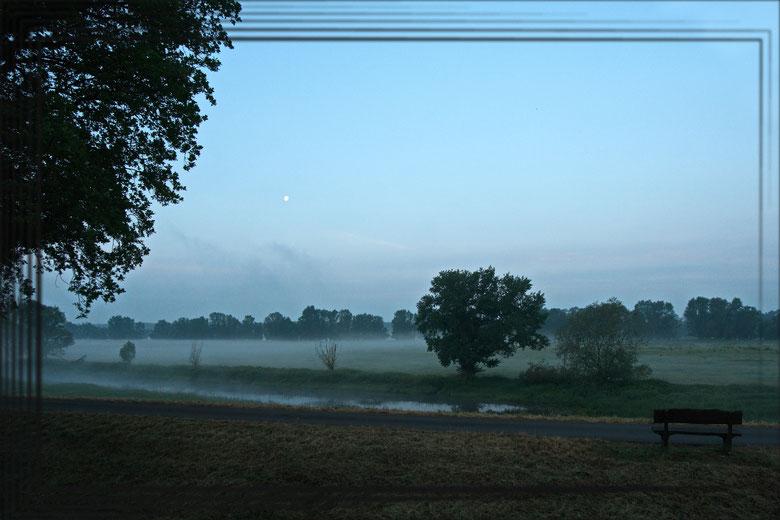 Morgennebel steigt aus den Elbwiesen auf