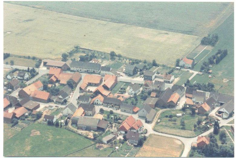 Mainzholzen