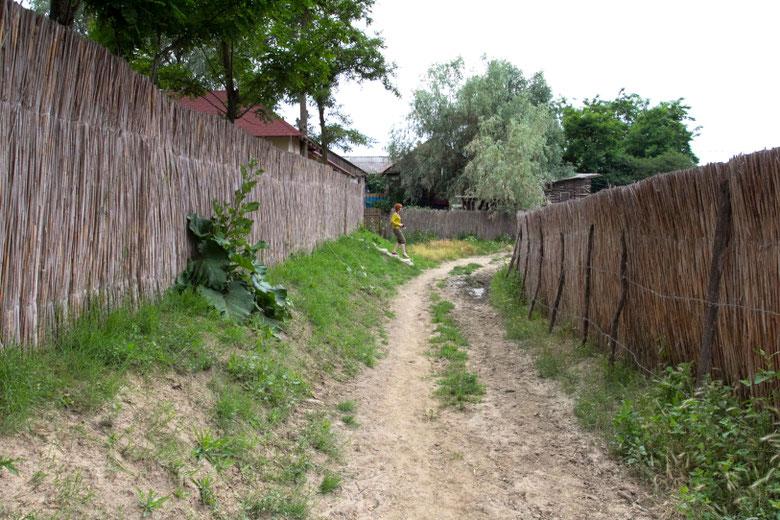Dunojaus deltos kaimas Mila 23 Rumunijoje / Foto: Kristina Stalnionytė