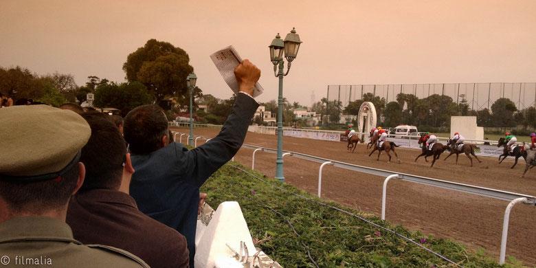 Hipódromo Casablanca, Marruecos, carreras de caballos, apuestas, equinos
