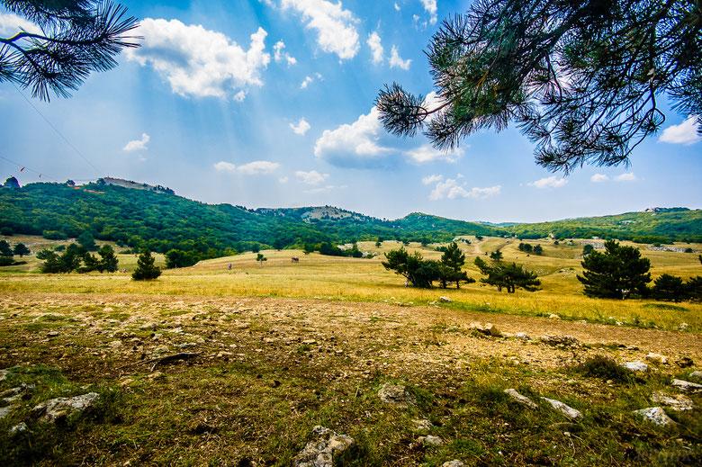 ...где и просидели час, наслаждаясь пейзажем и глазея на съезжающих по тросу прямо к нам орущих туристов.