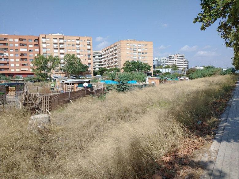 Chabolas en los terrenos ocupados en el barrio de Benimaclet  en València.