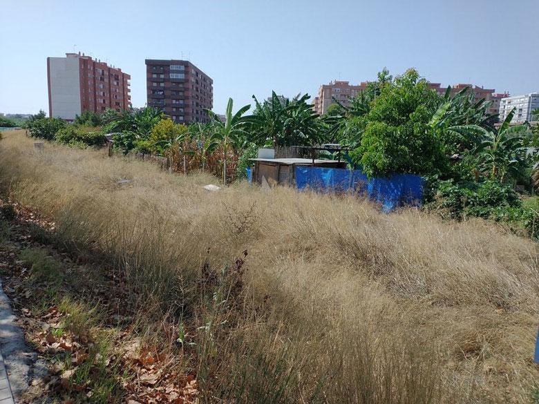 Chabolas y terrenos ocupados en el barrio de Benimaclet  en València.