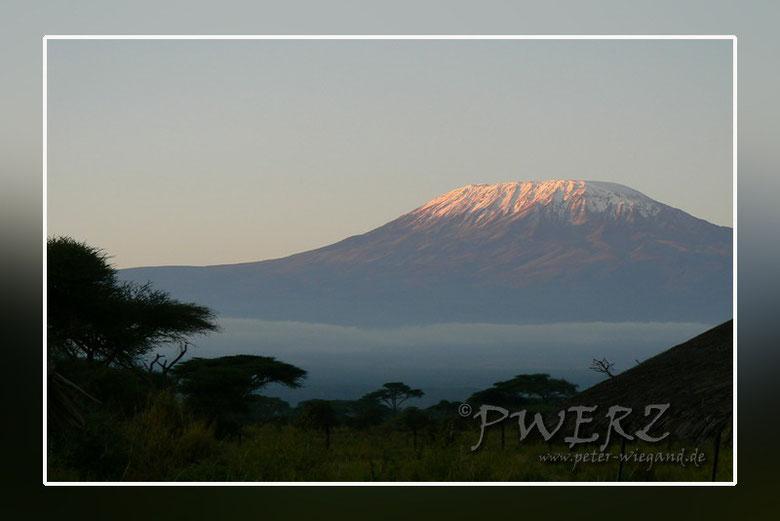Kilimandscharo bei Sonnenaufgang