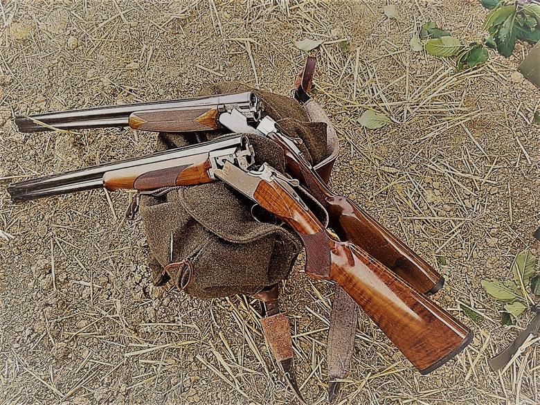 Waffe für die Gänsejagd