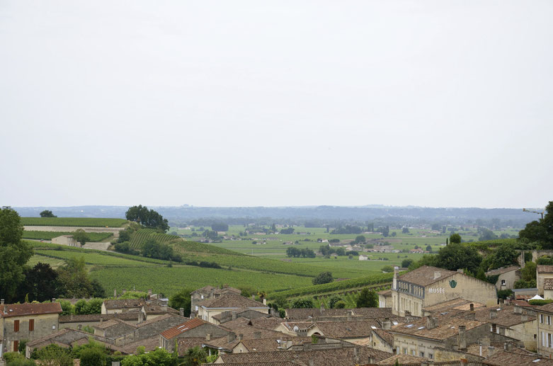 View from top of Saint-Emilion