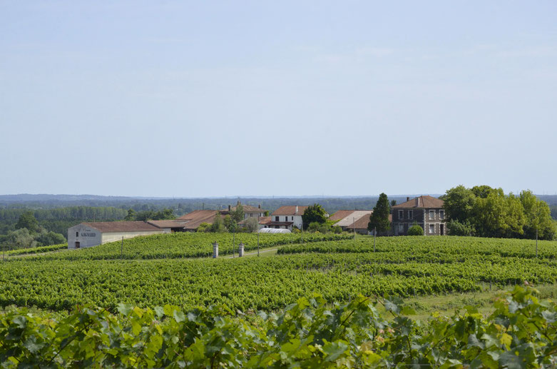 Chateau Gagnard