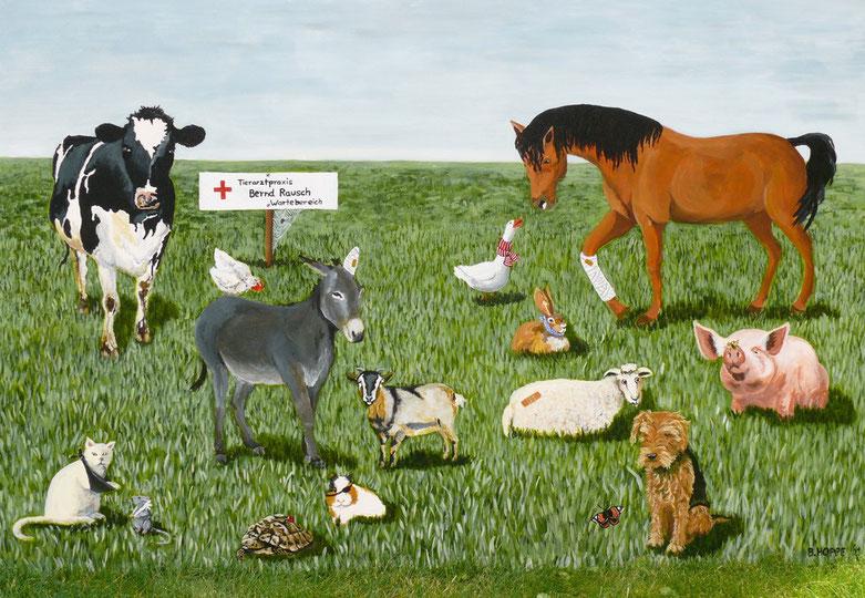 Tierarztpraxis Bernd Rausch