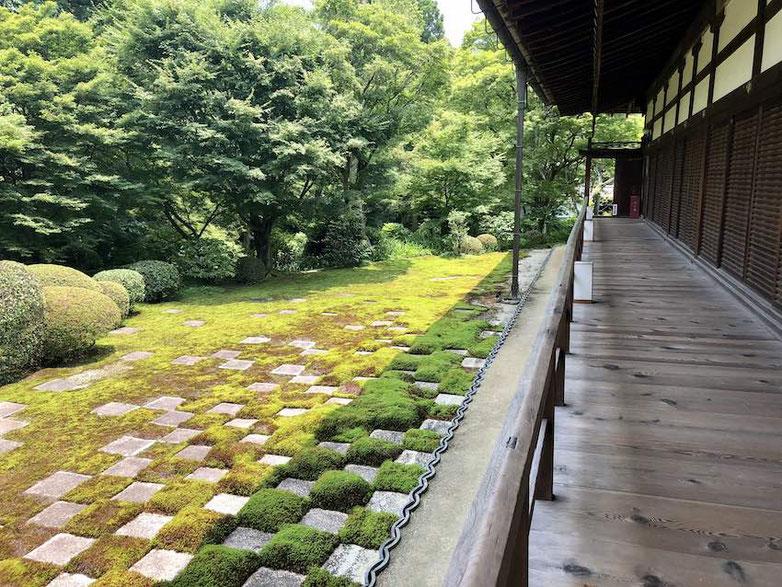 東福寺にある重森三玲 作のお庭。本でみていたよりもスケールが遥かに大きく、重厚で威厳があります。気持ちがぴしっと引き締まる禅の庭に惹かれます。苔が美しく保たれているのは、この場所の自然環境と手入れの賜物。いいお庭は時空を超えて訴えてくるものがあります。