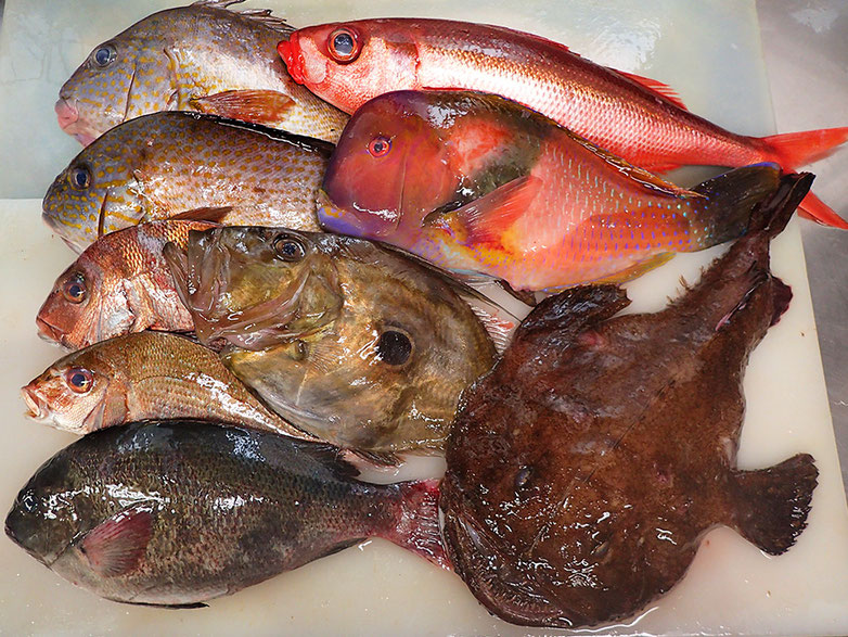 宅配寿司 未利用魚