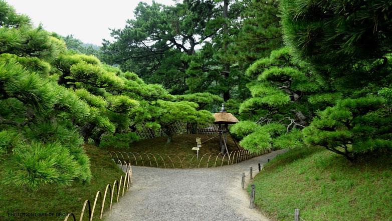 Allées verdoyantes, jardin de Ritsurin, île de Shikoku, photo non libre de droits
