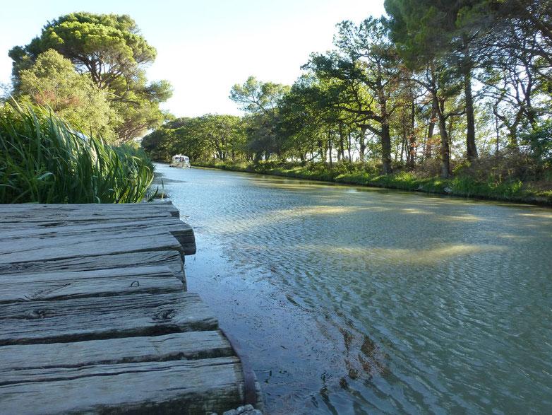Le chemin de halage du canal, ambiance de calme, repos, et sérénité, pour de belles promenades le long du canal du midi à vélo, à pied, à cheval...