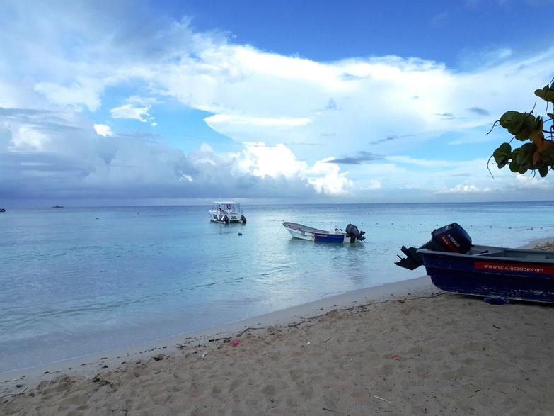 Karibik La Romana Angelausflug
