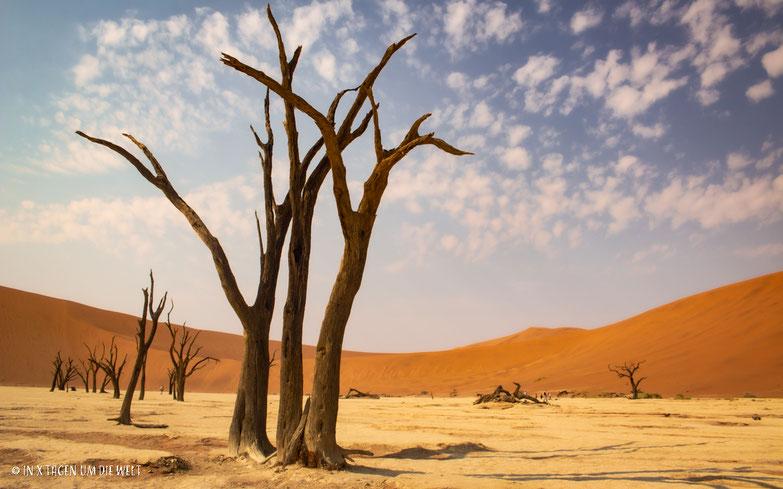 Dead Vlei, Namib, Namibia, Sossusvlei, toter Baum, Wüste