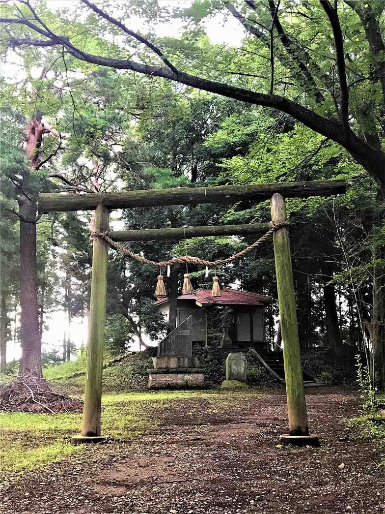 鳥居は杉の木でできています