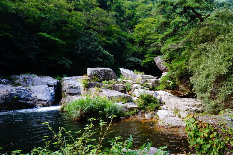 温泉のすぐ横はきれいな水が流れる奥津渓谷です。