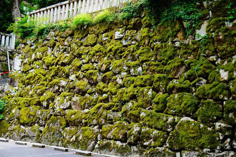 歴史を感じさせる石垣と苔がお出迎え。