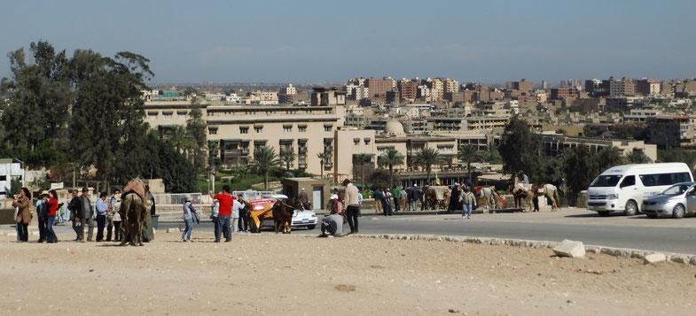 Delaus Reise-Blog, Ägypten-Reprotagen