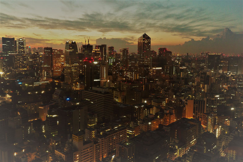 Tokyo, August 2018, Copyright: Dietmar J. Wetzel