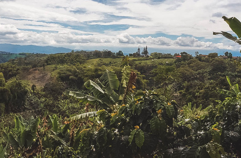 Filandia Colombia