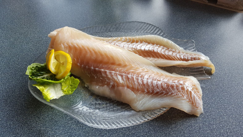 Fangfrische Seelachs-Filets