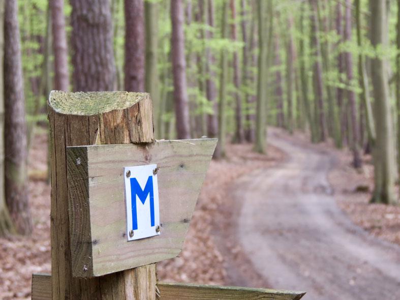 Müritz-Nationalpark, Wandern, Weg, Schild
