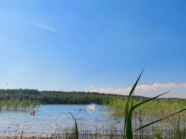 Müritz-Nationalpark, Krummer See, Zwenzow, Ferienhaus, Urlaub