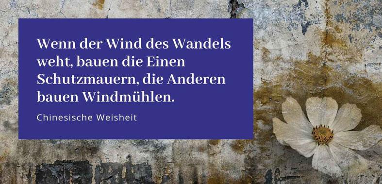 """""""Wenn der Wind des Wandels weht, bauen die Einen Mauern, die Anderen bauen Windmühlen"""" Gastbeitrag von Doreen Tritel Hehocra über Mauern #Mauern #Glück #Wandel"""