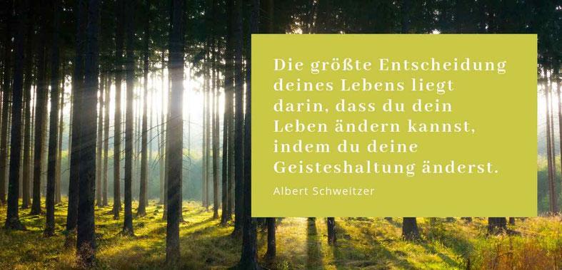 Die größte Entscheidung deines Lebens liegt darin, dass du dein Leben ändern kanns, indem du deine Geisteshaltung änderst - Zitat Albert Schweitzer