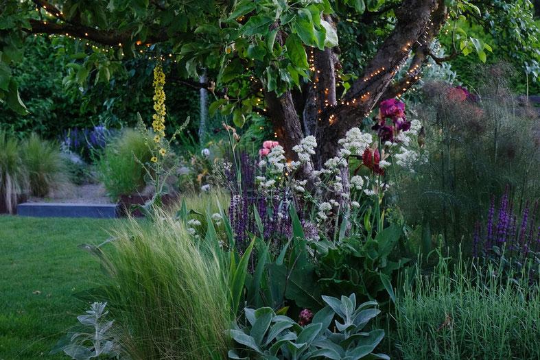 dieartigeGARTEN // June Garden - Mystic Beet with lights in the evening