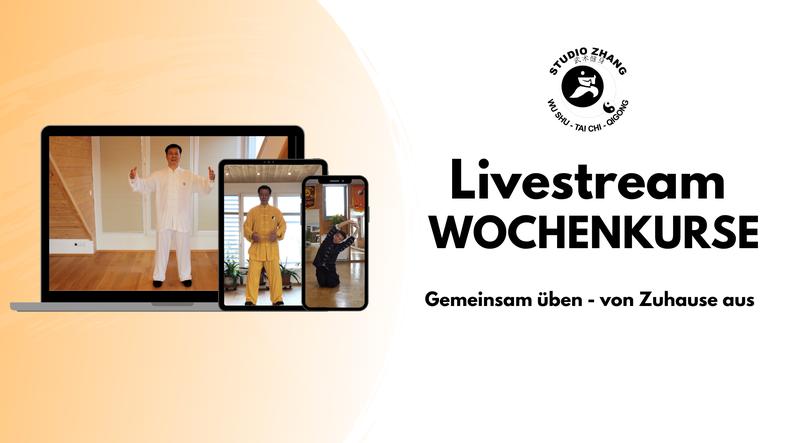 Qi Gong Tai Ji Tai Chi Onlinekurs Livestream Aufzeichnungen Studio Zhang Wien