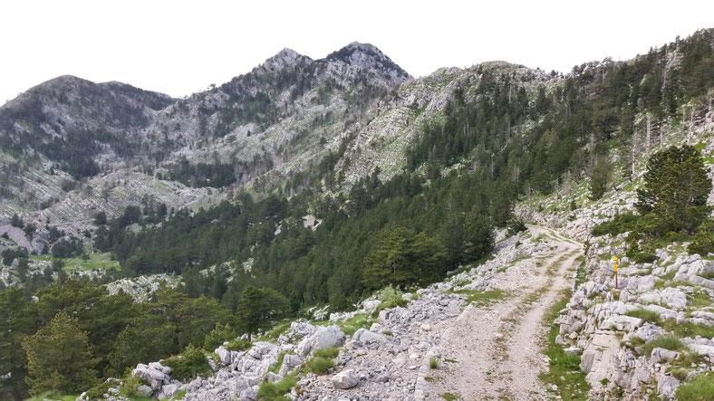 Das letzte Stück des Weges, von der Passhöhe gen Nordwesten gesehen.