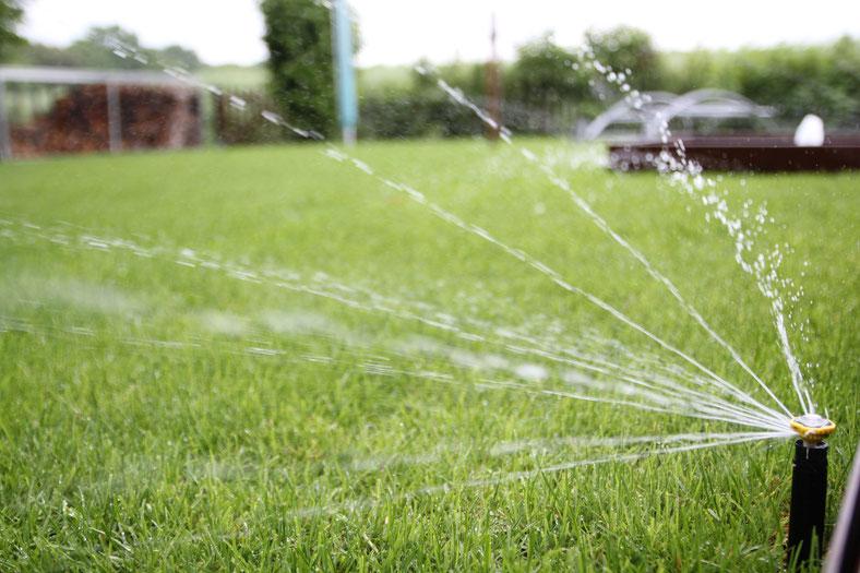 RainBird 1800 Sprinkler mit Rotary Düse (Privatgarten Halle/Saale)