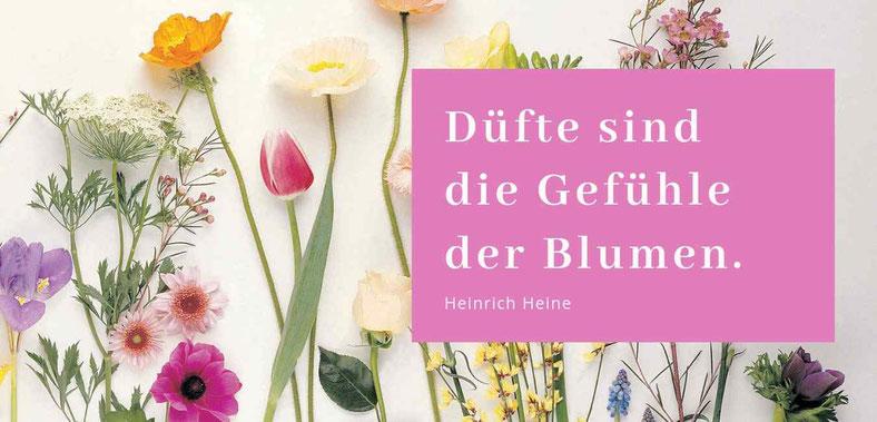 Blumen sind die Gefühle der Blumen - Gastbeitrag von Gudrun Dara Müller #Blog #Blogparade #Selbstheilung