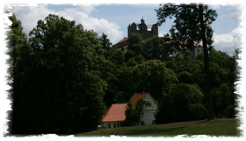 Schloss Ballenstedt und Schlossmühle