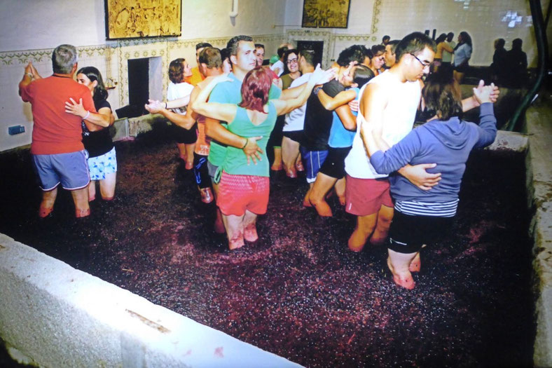 Dancing in the grapes