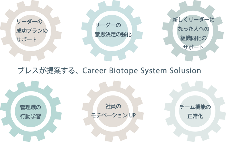Career Biotope System Solution