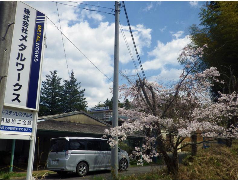 桜がきれいでした!