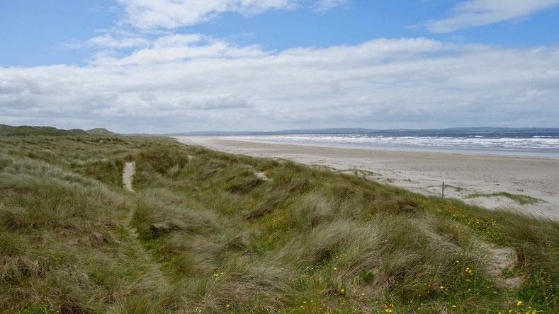 County Sligo in Irland: Unendliche Sandstrände und ein Tafelberg.