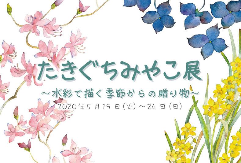 たきぐちみやこ展2020イメージ画像