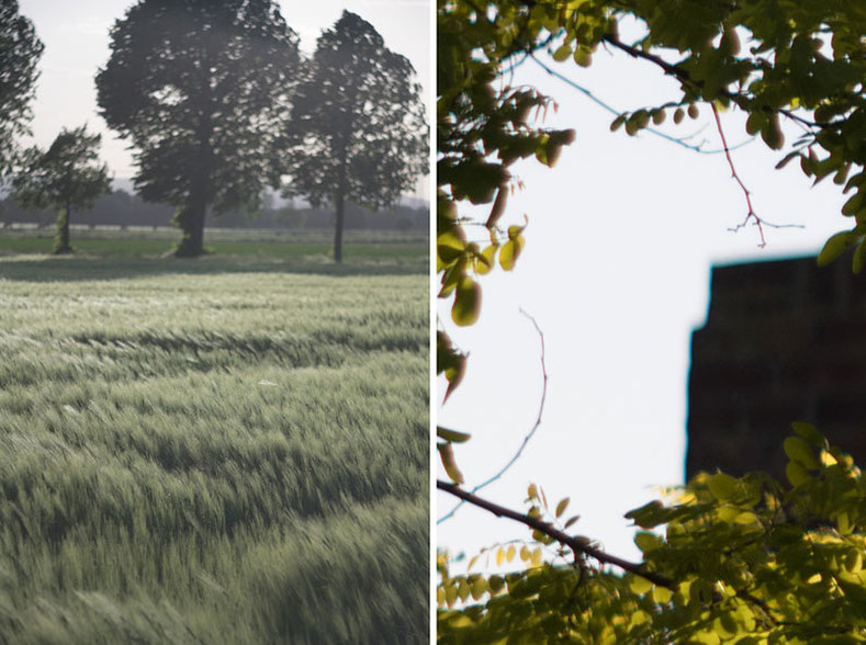 Bildfehler Flare und CAs: Triotar 4/13,5 cm für Exakta an Nikon Z7. Foto: bonnescape.de