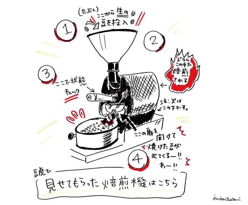 焙煎機イラスト 茶谷順子 豆虎 グラレコ