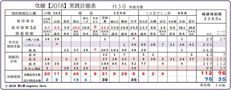 梅園地【改植2018】実践計画表  和×夢 nagomu farm