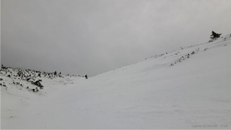 Skiabfahrt vom Schneeberg - Einfahrtsbereich in den oberen Hoyosgraben