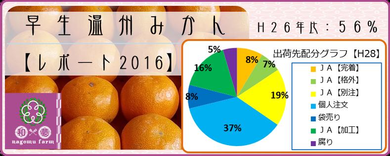 早生温州みかん【レポート2016】 和×夢 nagomu farm