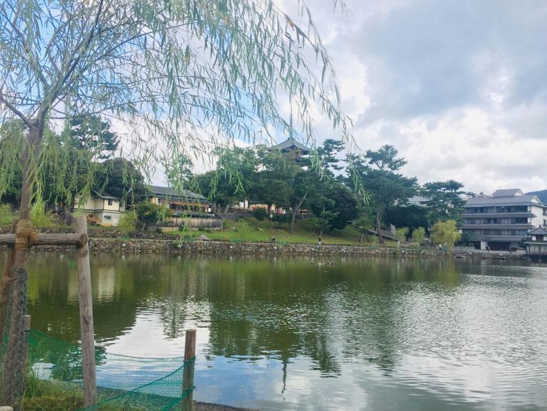 観光スポットの奈良公園や猿沢池からも徒歩圏内です♪