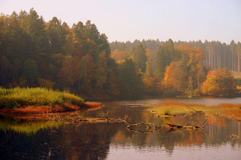 Herbst an der Kanzelbrücke am Möhnesee