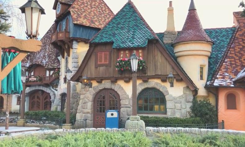 La réhabilitation de plusieurs toits à Fantasyland
