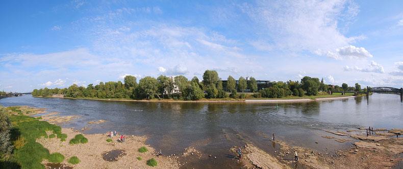 Blick auf den Werder in Magdeburg