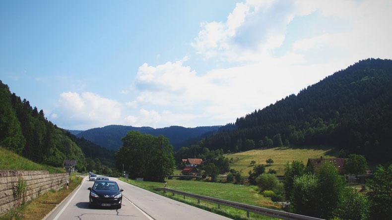 allamgen bigousteppes route camion  forêt noire